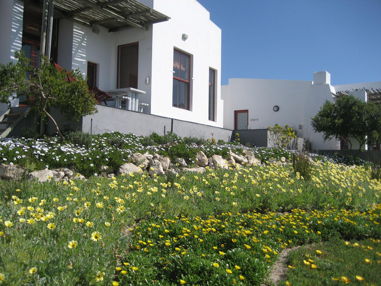 DROMEDARIS SEAFRONT HOUSE